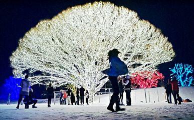 christmas lights twinkle