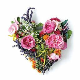 flower nature emotions love inspiration freetoedit