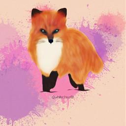 fox petsandanimals nature wildanimal orange