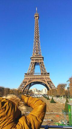 paris eiffeltower torre france spring freetoedit