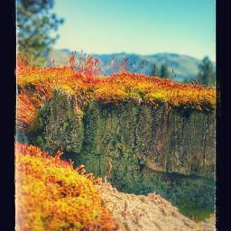 freetoedit mountainsarecalling mountainview mountainlyfe mountainscape